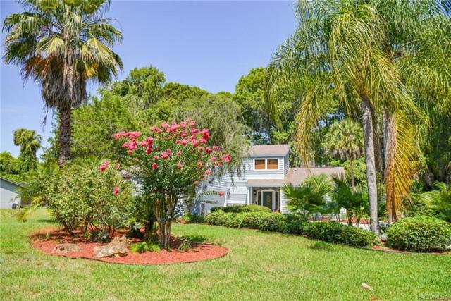 1050 S Chateau Point, Inverness, FL 34450 (MLS #784206) :: Pristine Properties