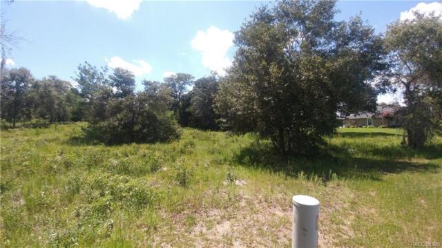 1435 E Ridgeline Path, Inverness, FL 34453 (MLS #784210) :: Plantation Realty Inc.