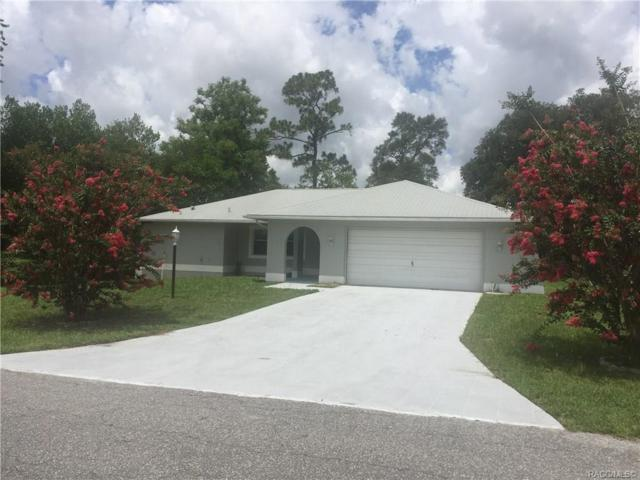 3120 N Tamarisk Avenue, Beverly Hills, FL 34465 (MLS #784213) :: Plantation Realty Inc.