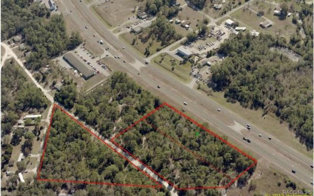 5587 S Suncoast Boulevard, Homosassa, FL 34446 (MLS #784254) :: Pristine Properties