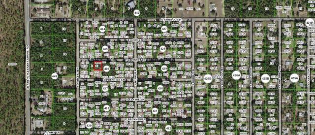 5096 E Lambert Lane, Inverness, FL 34452 (MLS #784318) :: Plantation Realty Inc.