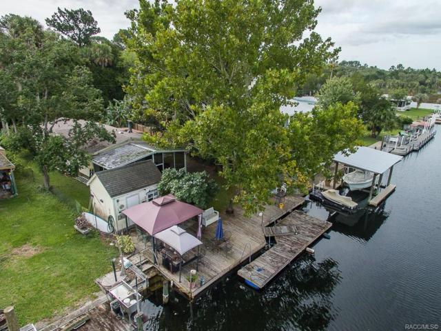 2610 N Comanche Point, Crystal River, FL 34429 (MLS #784353) :: Team 54