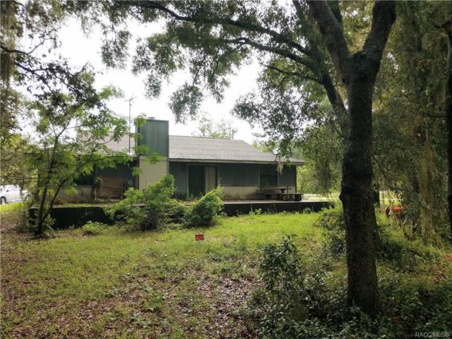 6361 N Pagoda Tree Terrace, Hernando, FL 34442 (MLS #784389) :: Team 54