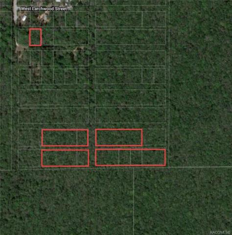 10219 W Brocade Street, Homosassa, FL 34448 (MLS #784394) :: Plantation Realty Inc.