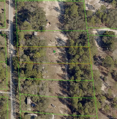 4909 S Grand Circle Terrace, Homosassa, FL 34446 (MLS #784399) :: Plantation Realty Inc.
