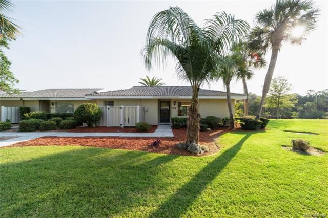 11364 W Bayshore Drive #49, Crystal River, FL 34429 (MLS #784414) :: Pristine Properties