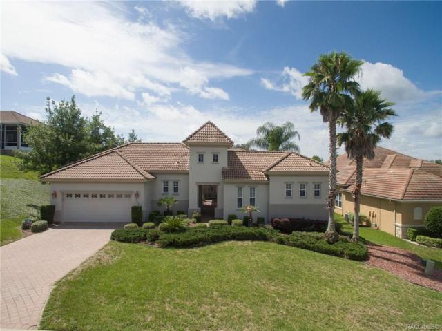 968 W White Oak Place, Hernando, FL 34442 (MLS #784498) :: Team 54