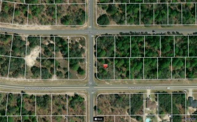 2199 W Hampshire Boulevard, Citrus Springs, FL 34433 (MLS #784501) :: Team 54