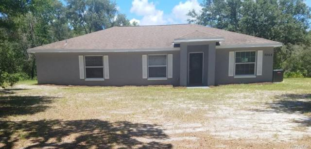 7355 W Lemonade Lane, Dunnellon, FL 34433 (MLS #784502) :: Team 54