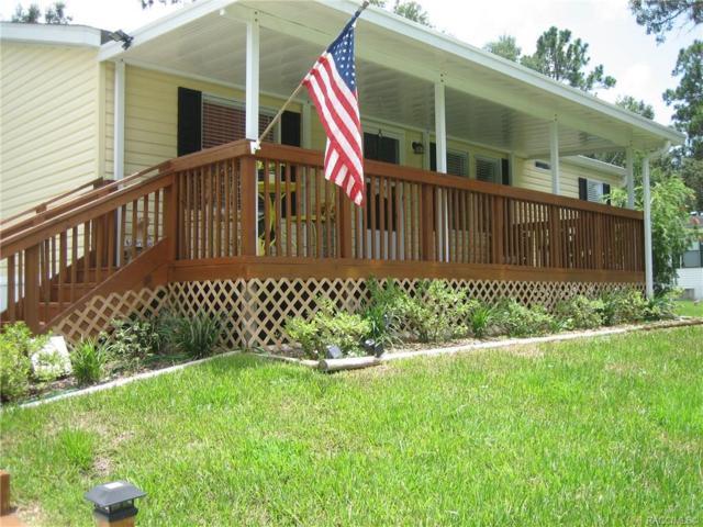 8453 Shady Fork Way, Dunnellon, FL 34433 (MLS #784540) :: Team 54