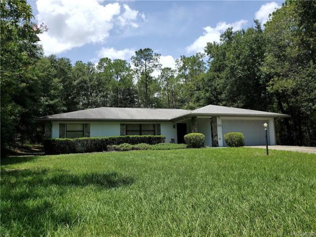 10140 N Biscayne Drive, Citrus Springs, FL 34434 (MLS #784548) :: Pristine Properties