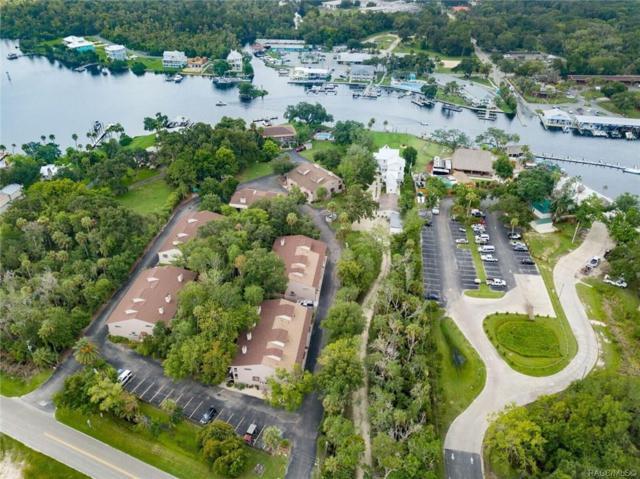 5155 S Gray Pelican Way, Homosassa, FL 34448 (MLS #784551) :: Pristine Properties