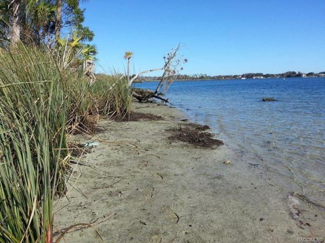 1196 N Stoney Point, Crystal River, FL 34429 (MLS #784559) :: Team 54