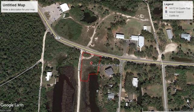14172 W Ozello Trail, Crystal River, FL 34429 (MLS #784575) :: Plantation Realty Inc.