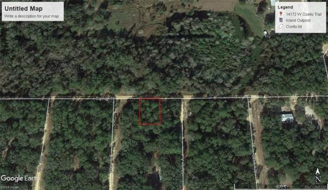 Lot 29 Sigman Street, Interlachen, FL 32148 (MLS #784579) :: Pristine Properties