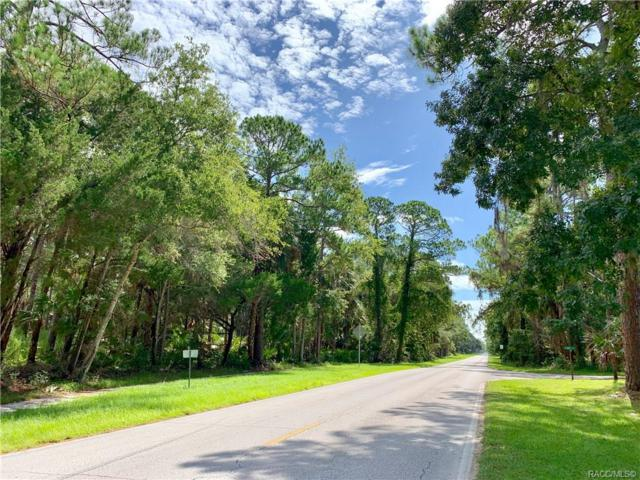 0 40 W Highway, Yankeetown, FL 34498 (MLS #784605) :: Plantation Realty Inc.