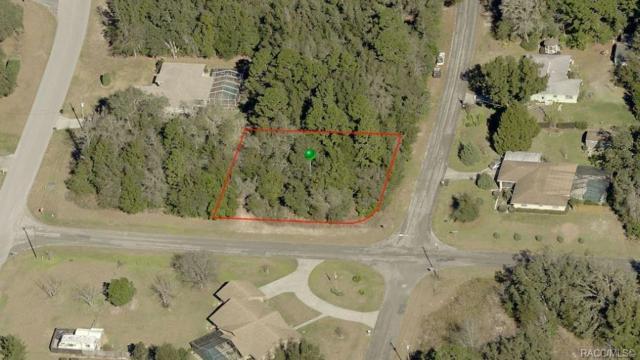 8266 N Sarazen Drive, Citrus Springs, FL 34434 (MLS #784614) :: Plantation Realty Inc.