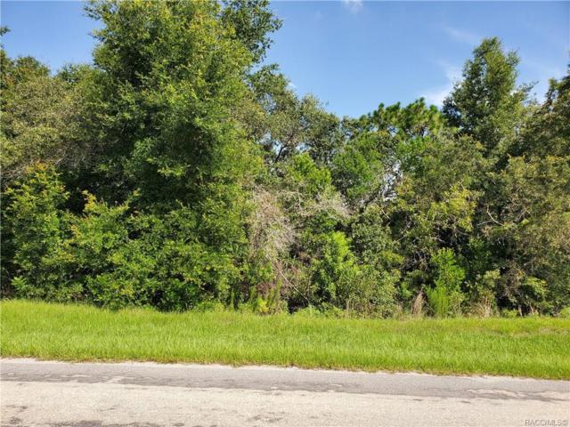 911 W Colbert Court, Beverly Hills, FL 34465 (MLS #784628) :: Plantation Realty Inc.