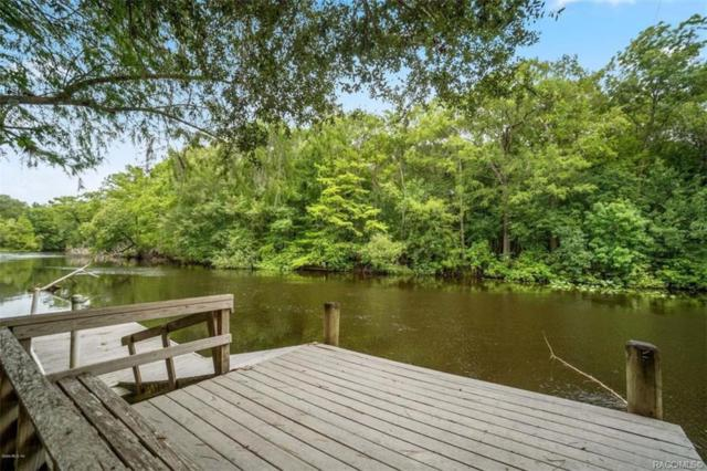 10589 N Silverlake Point, Dunnellon, FL 34434 (MLS #784629) :: Plantation Realty Inc.