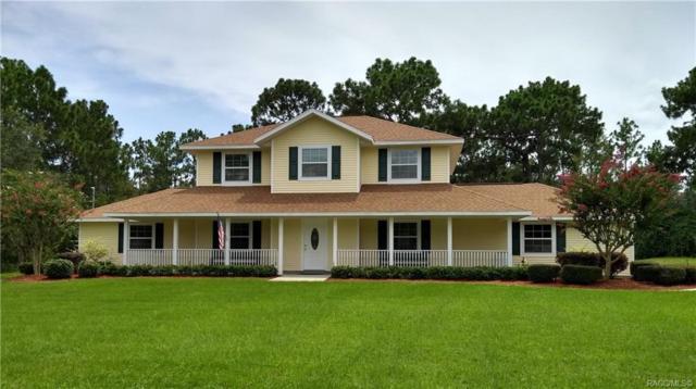 3882 W Birds Nest Drive, Beverly Hills, FL 34465 (MLS #784635) :: Plantation Realty Inc.