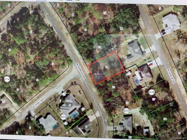 8265 Amboy Drive, Citrus Springs, FL 34433 (MLS #784646) :: Plantation Realty Inc.