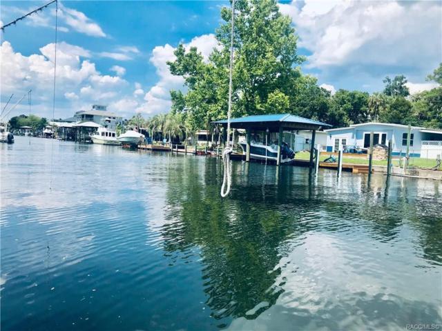 2635 N Seneca Point, Crystal River, FL 34429 (MLS #784651) :: Pristine Properties