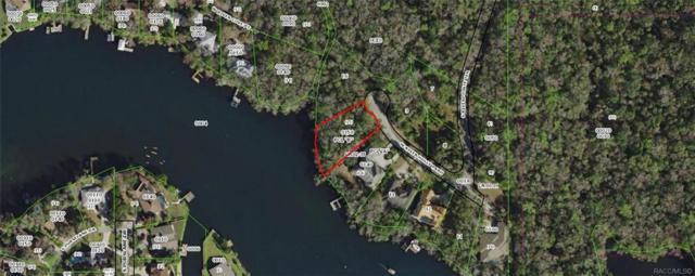 9580 W River Holly Path, Homosassa, FL 34448 (MLS #784685) :: Plantation Realty Inc.