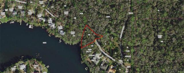 9590 W River Holly Path, Homosassa, FL 34448 (MLS #784689) :: Plantation Realty Inc.