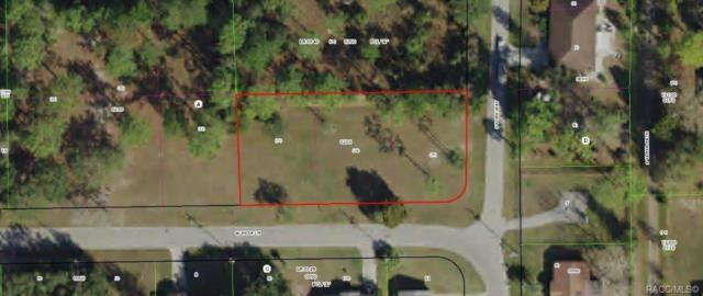 7553 W Mesa Lane, Homosassa, FL 34448 (MLS #784737) :: Plantation Realty Inc.