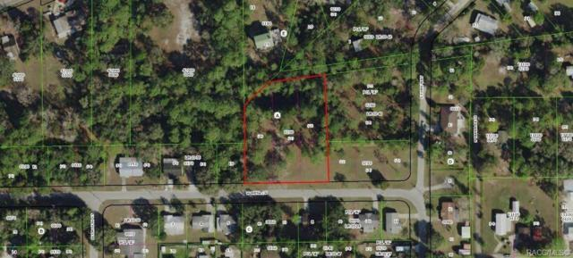 7589 W Mesa Lane, Homosassa, FL 34448 (MLS #784743) :: Plantation Realty Inc.