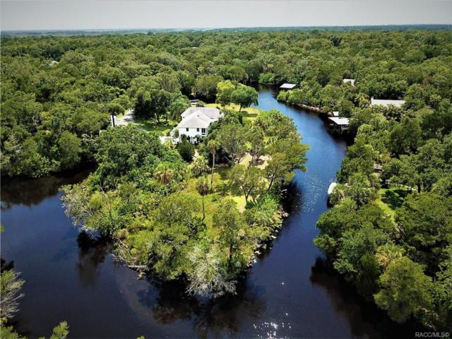 6577 S Beagle Drive, Homosassa, FL 34448 (MLS #784745) :: Plantation Realty Inc.