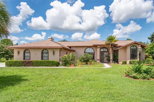 1178 N Cherry Pop Drive, Hernando, FL 34442 (MLS #784766) :: Plantation Realty Inc.