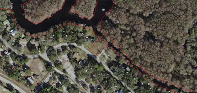 3979 E Riverside Drive, Dunnellon, FL 34434 (MLS #784789) :: Plantation Realty Inc.
