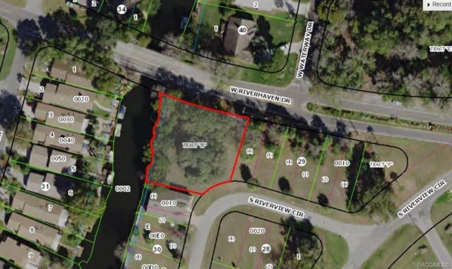 0 W Riverhaven Drive, Homosassa, FL 34448 (MLS #784822) :: 54 Realty