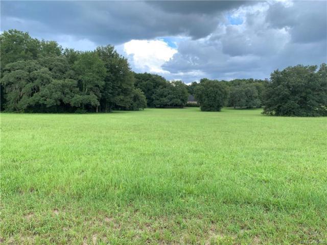 2925 N Anthony Avenue, Hernando, FL 34442 (MLS #784876) :: Pristine Properties