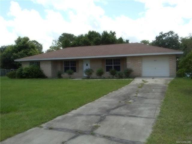 19531 SE 116th Avenue, Dunnellon, FL 34431 (MLS #784885) :: Pristine Properties