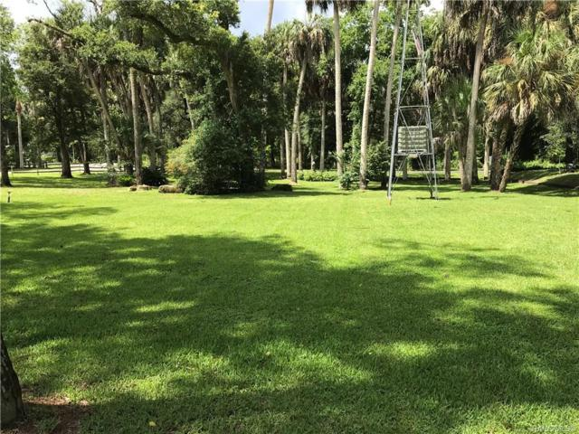 00 S Inglis Avenue, Inglis, FL 34449 (MLS #784888) :: Plantation Realty Inc.