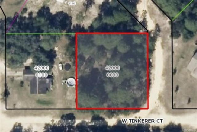 1512 N Timbercrest Way, Crystal River, FL 34429 (MLS #784901) :: Plantation Realty Inc.