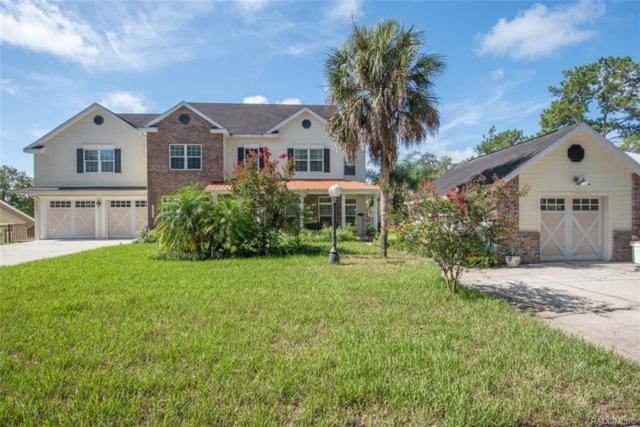 20946 River Drive, Dunnellon, FL 34431 (MLS #784904) :: Pristine Properties