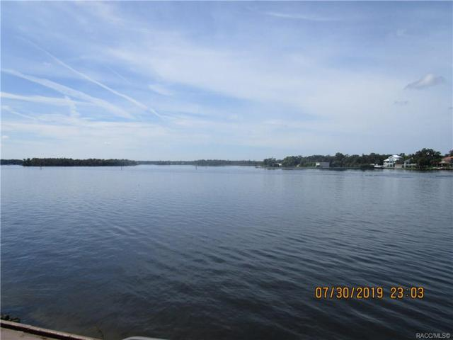 379 NW 14th Place, Crystal River, FL 34428 (MLS #784915) :: Pristine Properties