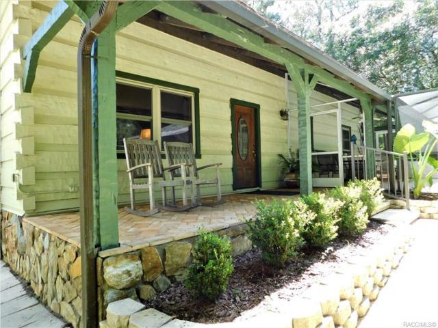 21344 Race Horse Lane, Brooksville, FL 34604 (MLS #784930) :: Pristine Properties