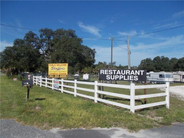 5415 W Homosassa Trail, Lecanto, FL 34461 (MLS #784943) :: Plantation Realty Inc.