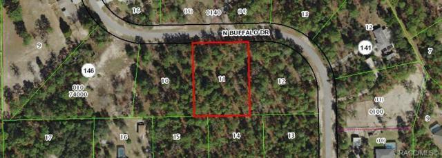 4926 N Buffalo Drive, Beverly Hills, FL 34465 (MLS #784980) :: Plantation Realty Inc.