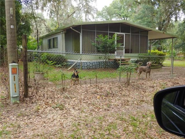8805 SW 32nd Terrace, Ocala, FL 34476 (MLS #784998) :: Plantation Realty Inc.