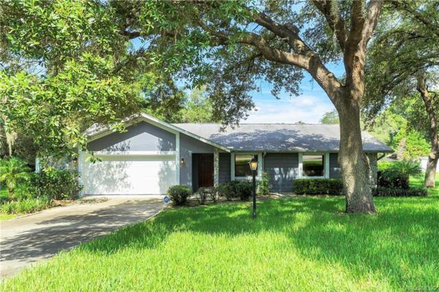 7112 N Croton Point, Hernando, FL 34442 (MLS #785064) :: Pristine Properties