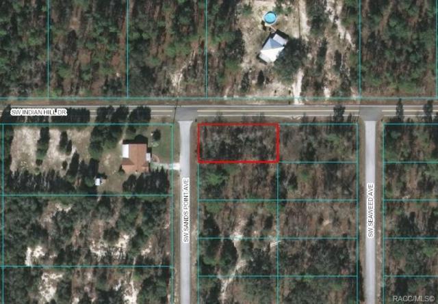 0 SW Sands Point Avenue, Dunnellon, FL 34431 (MLS #785066) :: Pristine Properties