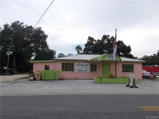 10591 W Yulee Drive, Homosassa, FL 34446 (MLS #785067) :: Pristine Properties