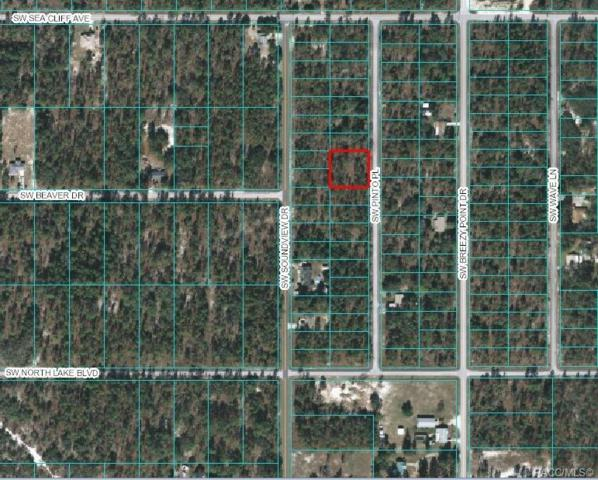 00 SW Pinto Place, Dunnellon, FL 34431 (MLS #785079) :: Plantation Realty Inc.