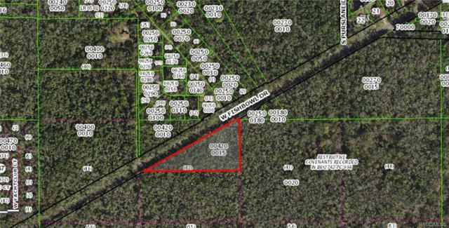 9800 W Fishbowl Drive, Homosassa, FL 34448 (MLS #785134) :: Plantation Realty Inc.