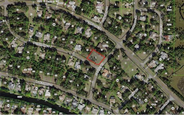 4736 S Myrtle Way, Homosassa, FL 34448 (MLS #785138) :: Pristine Properties